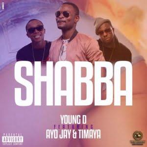 Young D ft. Ayo Jay & Timaya - Shabba