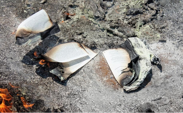 Photos: Angry South African youth burns down church of pastor who makes his members eat grass, snakes