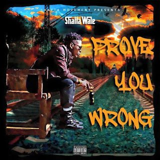 Shatta Wale - Prove You Wrong | Tubidy Mp3