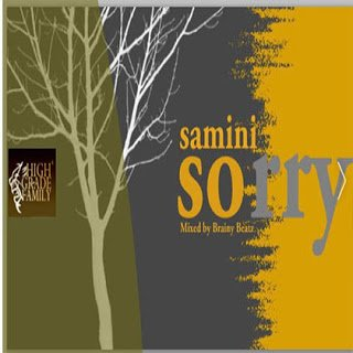 Samin - Sorry (Justin bieber cover) (Mixed by Brainy beatz)