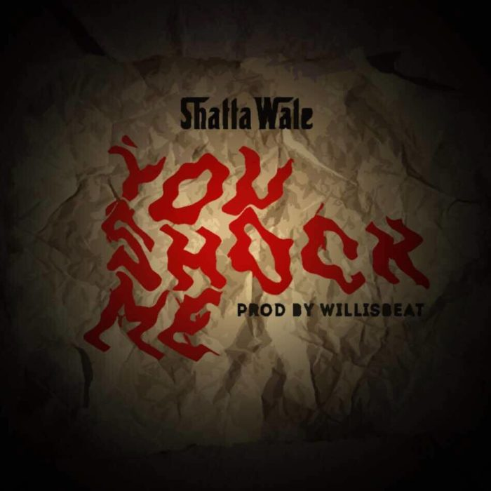 Shatta Wale - You Shock Me (prod by Williesbeatz)