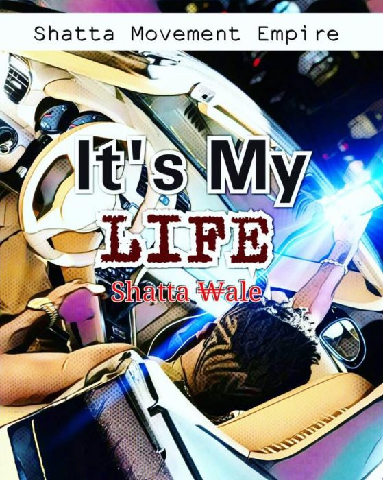 Shatta Wale ft. Sarkodie Its My Life prod. by Shawers Ebiem - Shatta Wale ft. Sarkodie - Its My Life (Prod. by Shawers Ebiem)